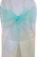 Where to rent SASH ORGANZA AQUA in Columbus GA