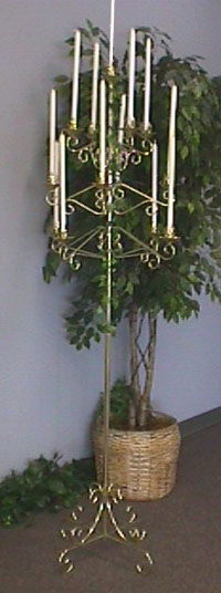 Where to find 13 BRANCH TREE BRASS SINGLE in Columbus